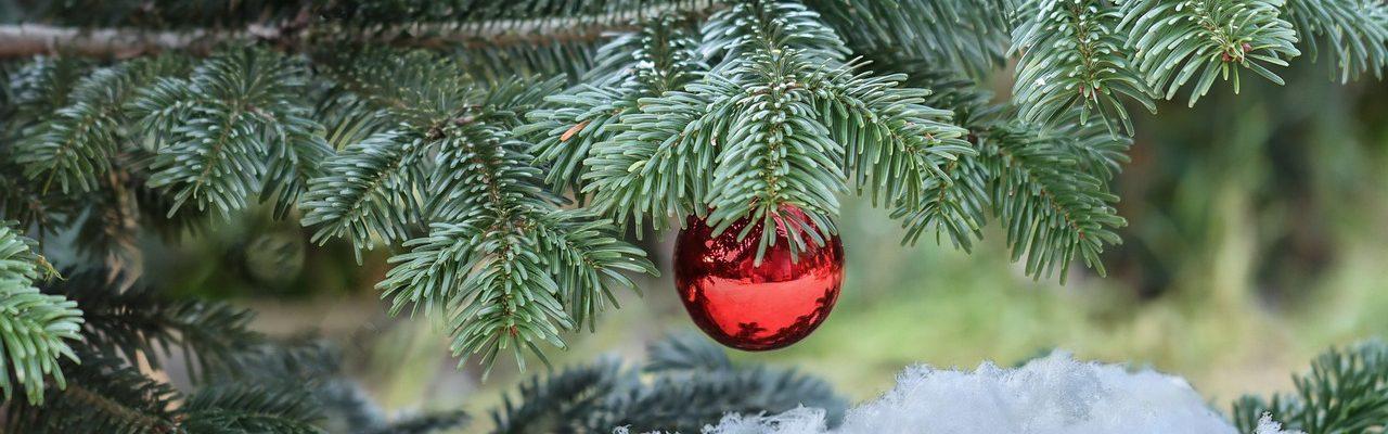 christmas-4732100_1280